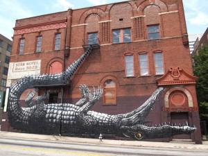 Roa Alligator