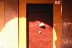 Alessandro Bertacchini - Immagini del silenzio 3
