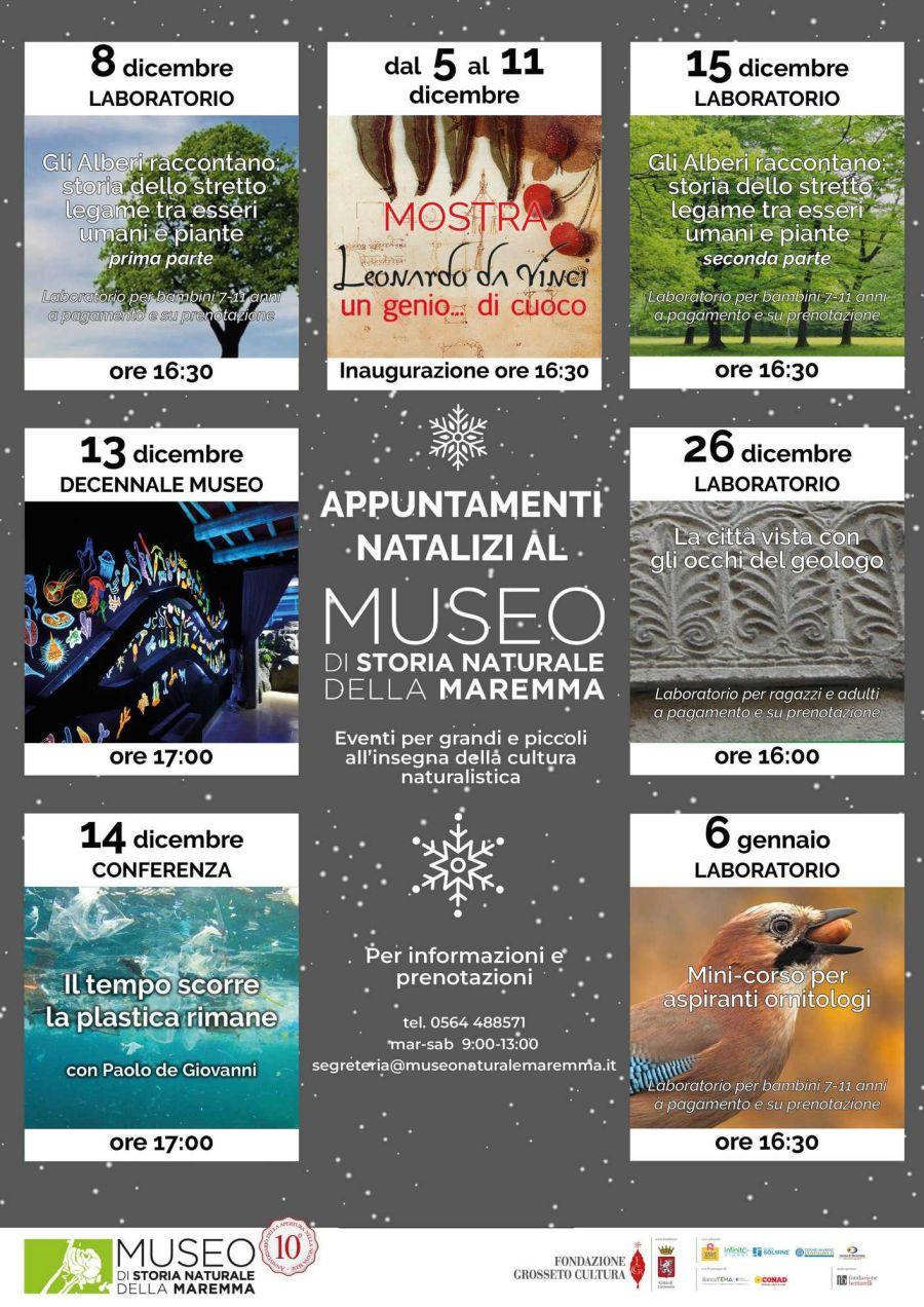 Museo Grosseto